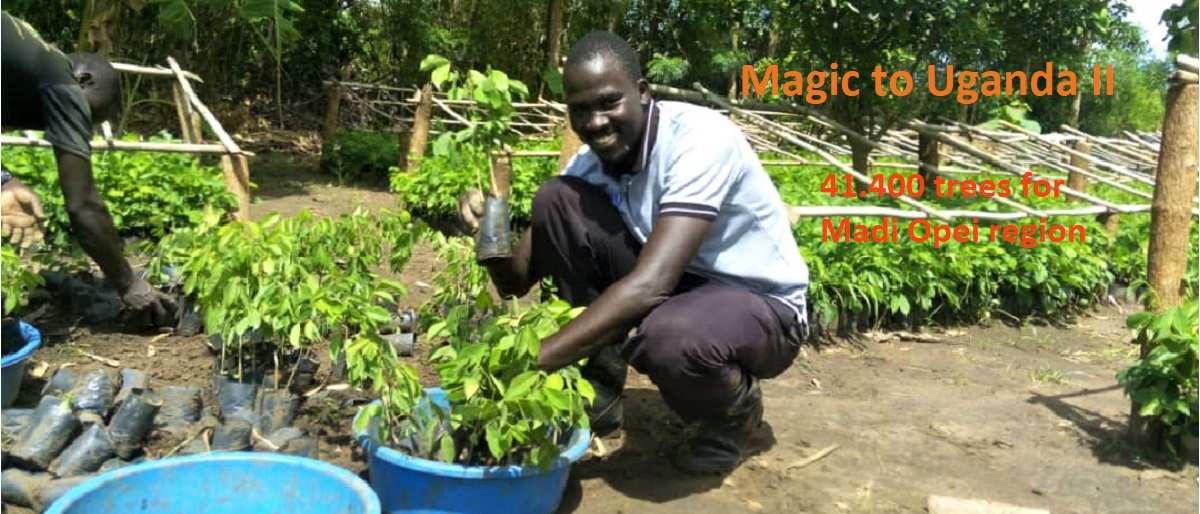 Enlace permanente a:Magic to Uganda II – 41.400 Bäume für Madi Opei (2020)