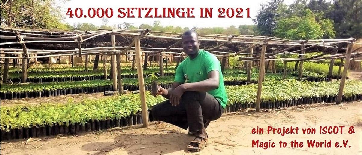 Permalink auf:Magic to Uganda II ('21) – mehr Bäume für Madi Opei